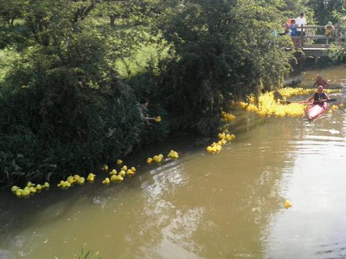 Castlethorpe Duck Race 27/6/10