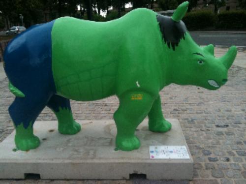 Rhino Mania