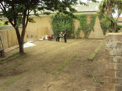 Garden of Tobn House 20.7.10