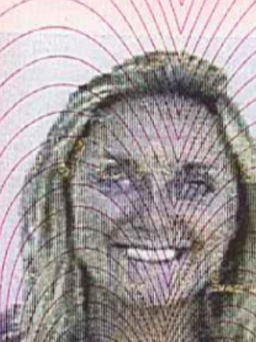 Paulina's driving licence picture