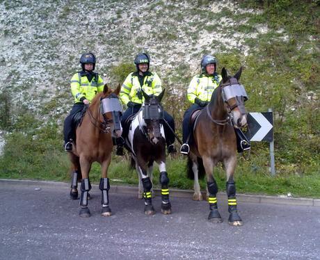 Police Horses at EDO