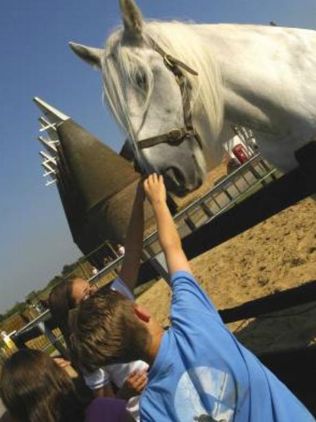 Kent - Hop Horse