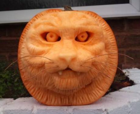 Purrfect Pumpkin