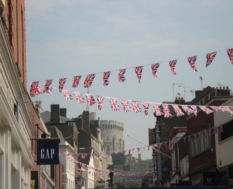 Windsor Bunting