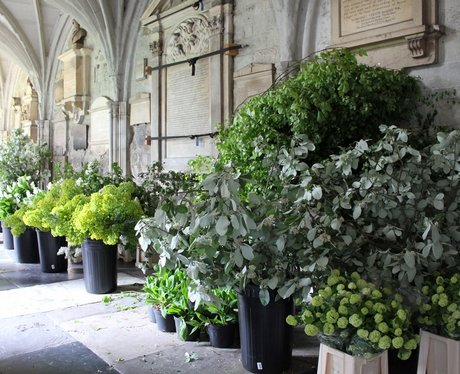 Flowers in the Abbey