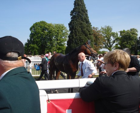 Tom, Lynsey & Jack visited Lingfield Park. The Hea