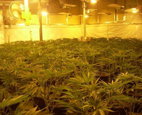 Police Drugs Raid At Barn In Rural Essex