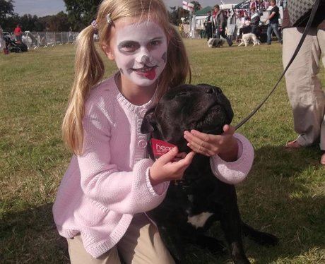 Essex Dog Day