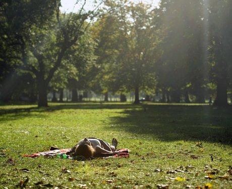 Sunny September Snaps