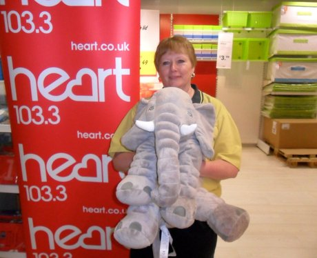 IKEA Soft Toys for Education Appeal