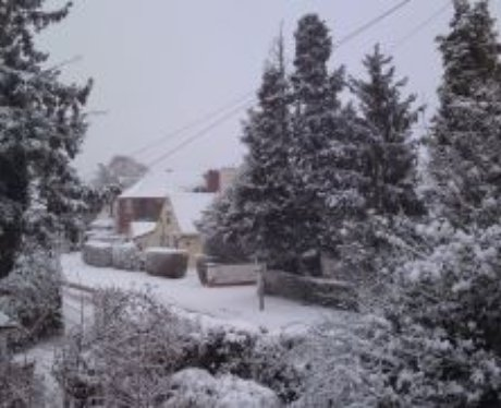 Snow Pics from Facebook