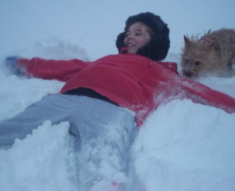 snow photos