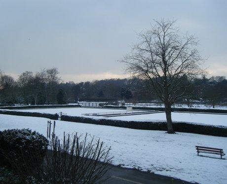 Your snowy pics