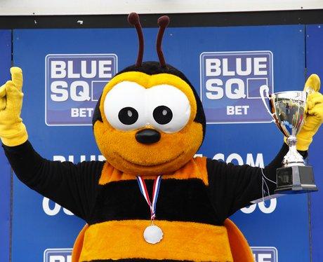 Blue Square Mascot Grand National - Blue Square Mascot Grand ... 4140437a4f7