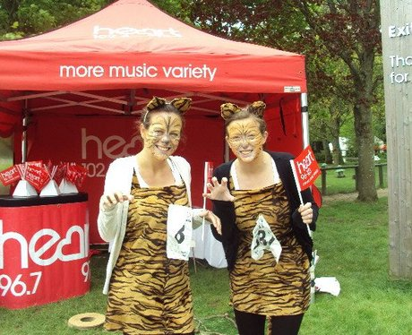 Marwell 10k Run