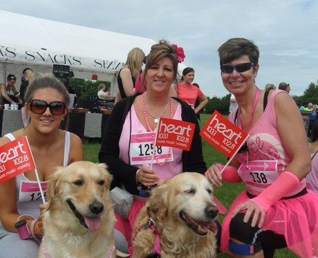 Gillingham Race For Life - With Pets