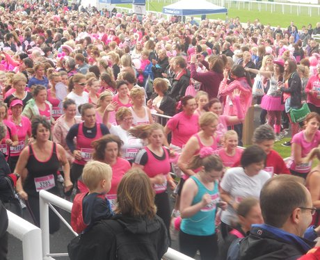 Race For Life: Chester 3
