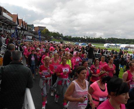 Race For Life Chester: Album 1