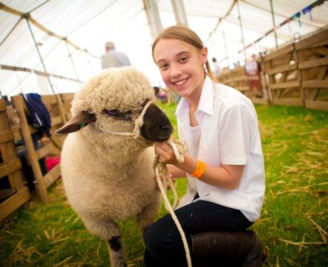 Royal Norfolk Show 2012