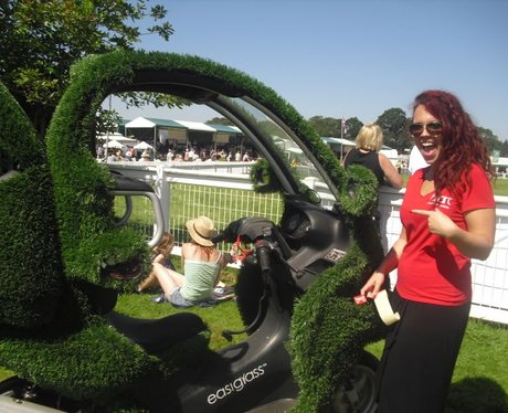 New Forest Show- Tuesday
