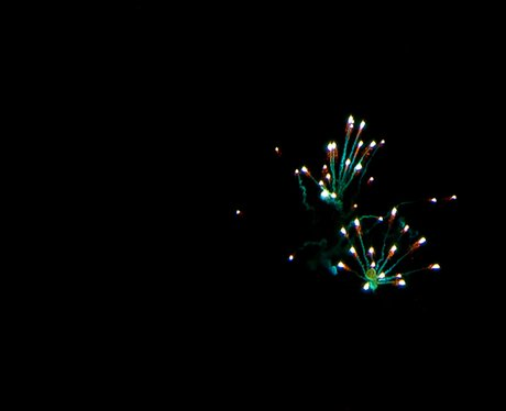 Great Yarmouth Fireworks Wk6