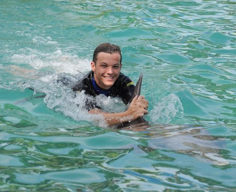 Louis Tomlinson swims with dolphins