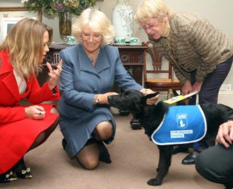Camilla Luton Guide Dogs