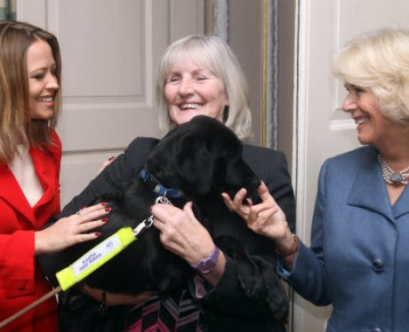 Camilla Luton Guide Dogs