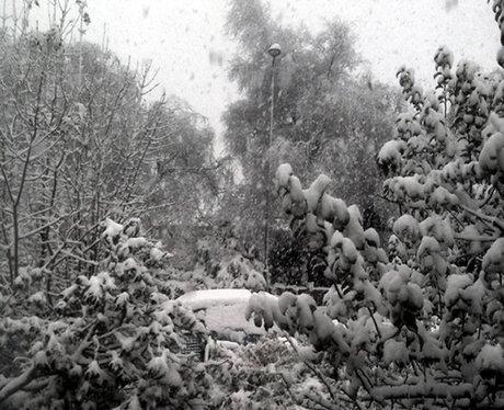 Wiltshire snow