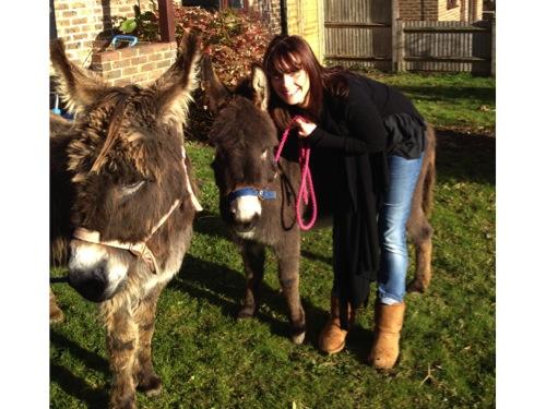 Maxine Donkey 500