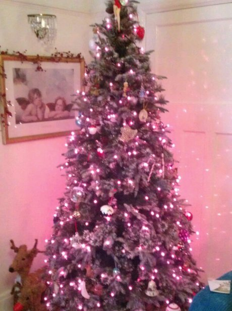 Heart Listeners' Christmas trees