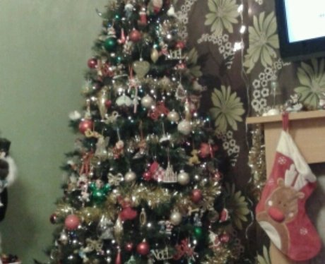 JK and Lucy's favourite Christmas Trees