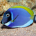 Image 9: Finding Dory