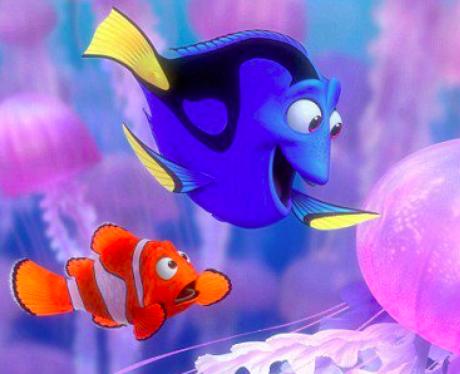 fish smuggle