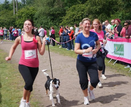 Redditch Race For Life - 3