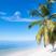 Image 6: beach