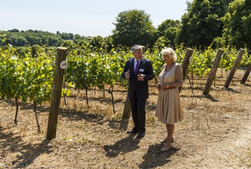 Camilla Opens Hampshire Winery