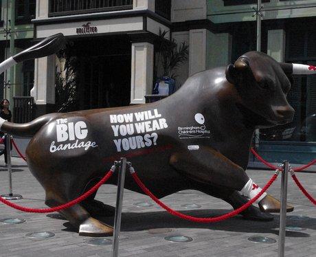 Big Bandage Campaign