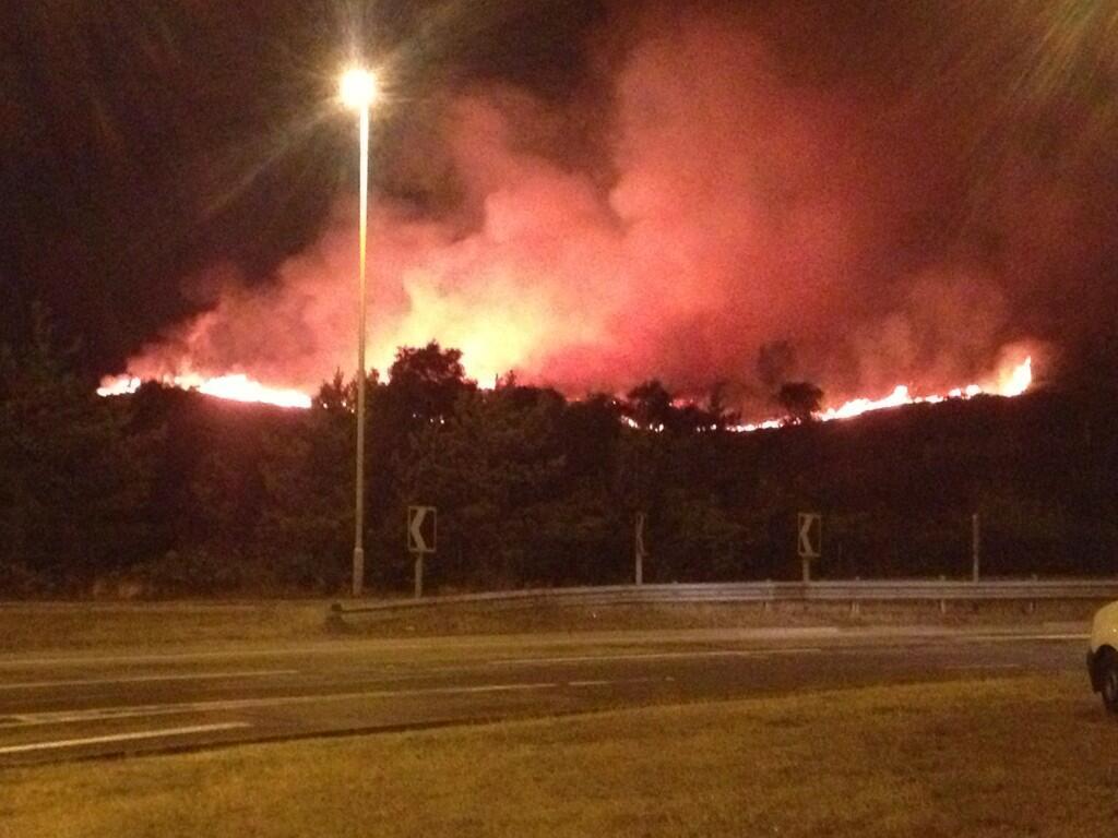 Canford Heath fire