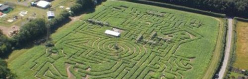 The Madhatter Maze