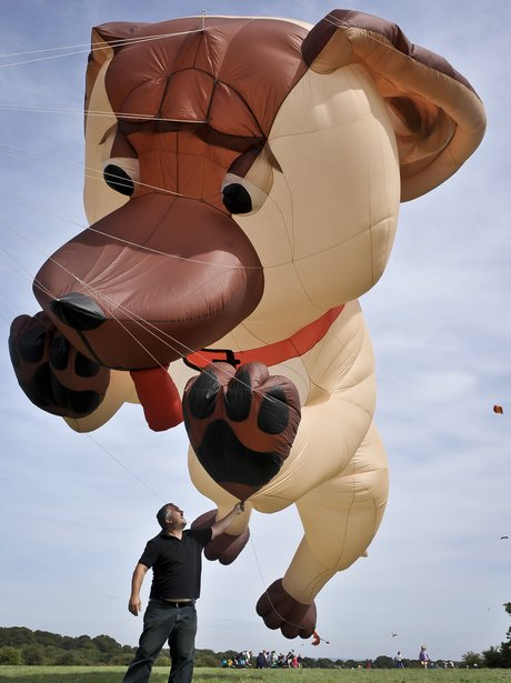 giant dog-shaped balloon