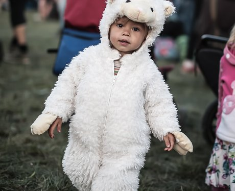 Child in a sheep costume