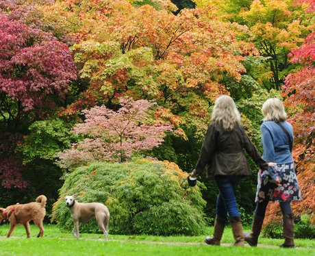 Autumn Colours in Gloucestershire