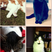Image 7: montage of four cats