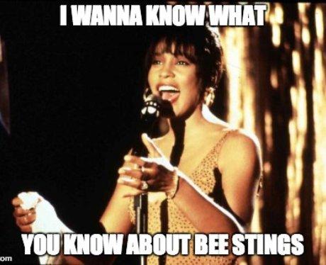 Whitney Houston sings onstage
