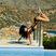 Image 1: Rihanna upside down twerk