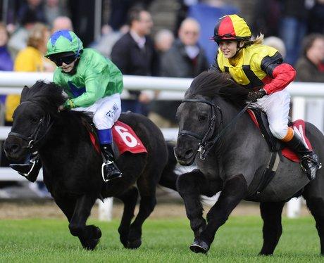 jockey's riding shetland ponies