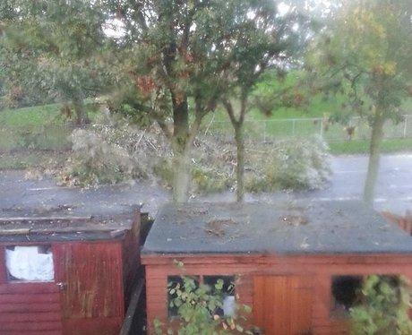 Storm Hits Essex