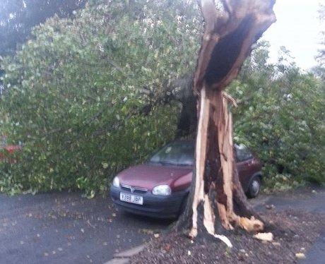 Sussex & Surrey Storm 2013