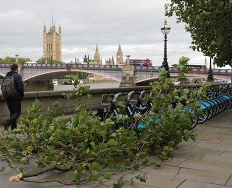 fallen branch in london